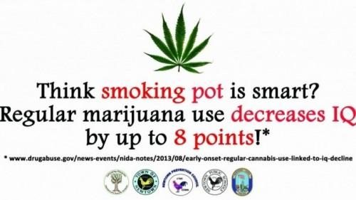 Smoking Pot?
